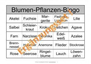 Spiele zum kennenlernen für senioren Harz Kurier - Home | Facebook