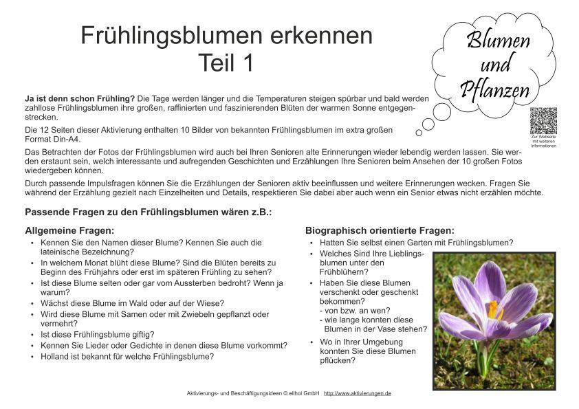 Bildkarten Frühlingsblumen Teil 1 Zur Beschäftigung Für